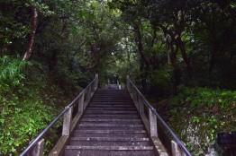 Nokogiri Yama Steps