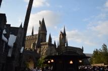 Hoggy, Hoggy Hogwarts!