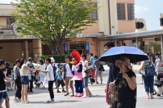 Background: Winnie The Woodpecker entertaining tourists. Foreground: The majestic oba-san in her natural habitat.