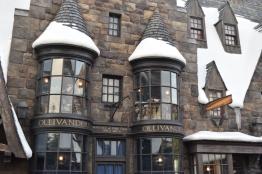 Ollivander's wand shop.