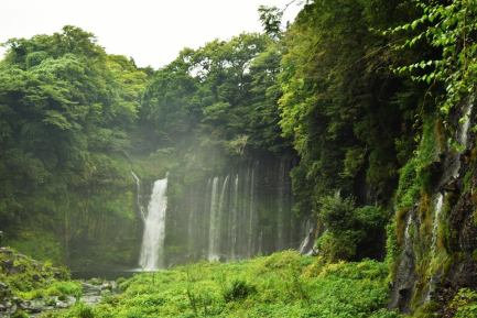The lush Shiraito Falls.