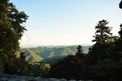 View from Mount Takao at Halfway Point