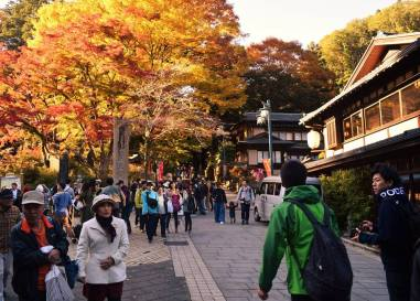 Fall colours - Mount Takao