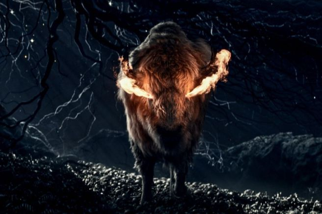 Flaming Bison