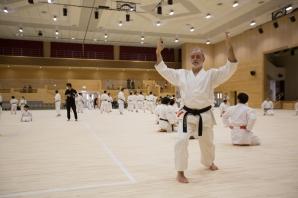 Karate Keikan 3