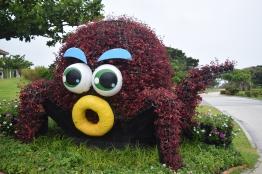 Okinawa Churaumi Aquarium Octopus Thing