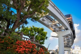 Okinawa Monorail and Greenery