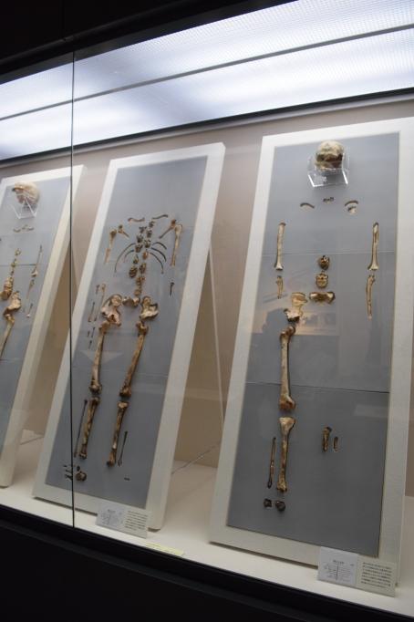 Okinawa Museum Display 5