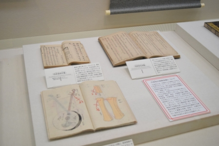 Okinawa Museum Display 8