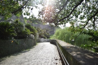 Okinawa Shurijo Castle Gardens