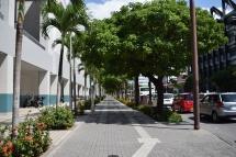 Okinawa Street View 2